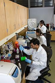 Chatterjee Lab workspace